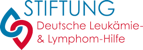 DLH_STiftung_Logo_small_100